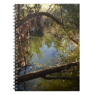 Franklin Canyon Park Lake 4 Notebook