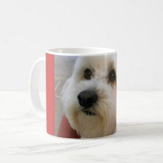 Frankly Freddie Mug