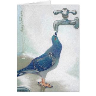 Frank's Pidgeon Card