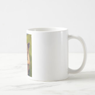 Freak on a Leash Basic White Mug