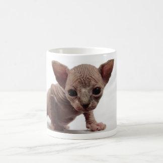 Freaky Cute Furless Sphynx Kitten Coffee Mug