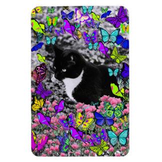 Freckles in Butterflies II - Tuxedo Cat Rectangle Magnets