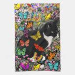 Freckles in Butterflies - Tuxedo Kitty