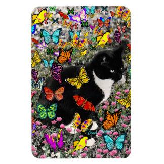 Freckles in Butterflies - Tuxedo Kitty Flexible Magnets