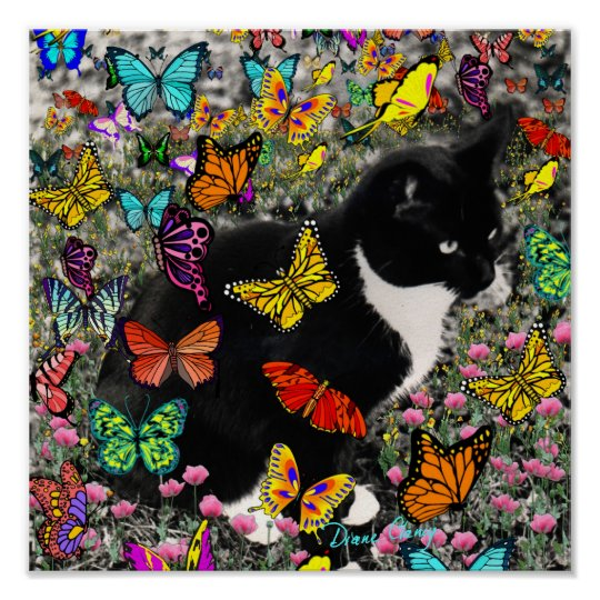 Freckles in Butterflies - Tuxedo Kitty Poster