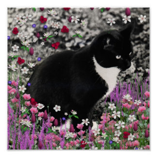 Freckles in Flowers II - Tuxedo Kitty Cat Poster