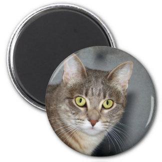 Fred 6 Cm Round Magnet