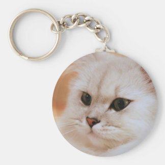 Freddie ~ Chinchilla Persians Key Ring