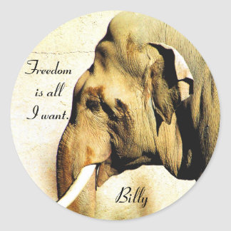Free Billy_ Sticker_by Elenne Classic Round Sticker