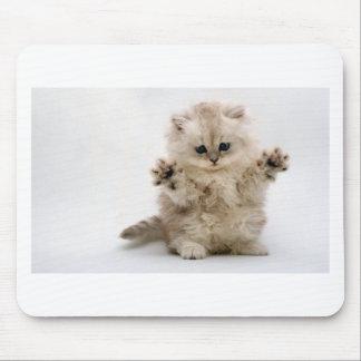 Free Hugs Kitten Mouse Pad