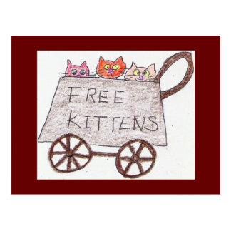 free kittens Postcard