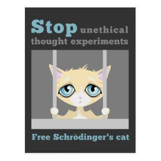 Free Schrodinger's Cat Post Card