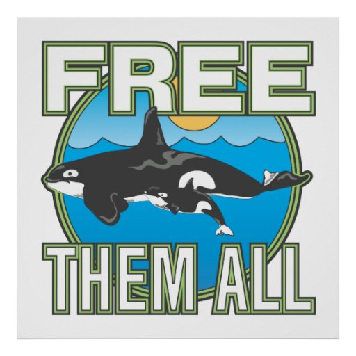 Free Them All (Whales) Poster
