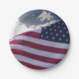 Freedom 7 Inch Paper Plate