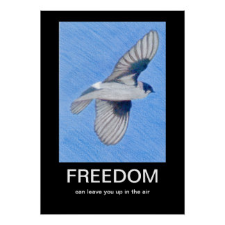 FREEDOM Demotivational poster