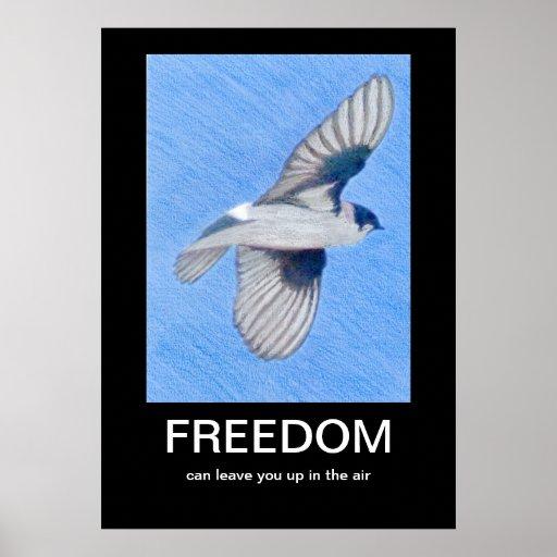 FREEDOM Demotivational poster