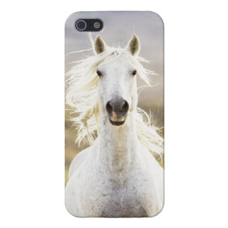 Freedom's Call Wild Horse IPhone  Case iPhone 5 Cases
