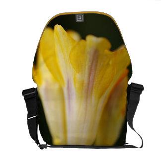 Freesia Style - Medium Messenger Bag Outside Print