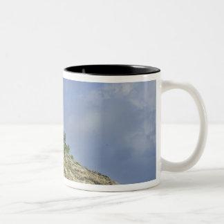 Fregate Island resort PR) Coffee Mug
