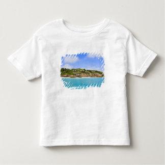 Fregate Island resort (PR) Tee Shirt