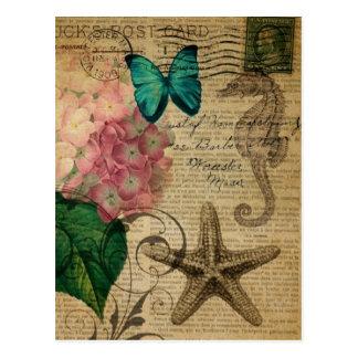 French botanical art seashell floral hydrangea postcard