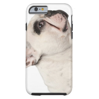 French Bulldog (4 years old) close-up Tough iPhone 6 Case