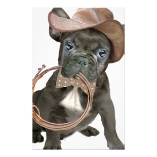 FRENCH BULLDOG country boy Stationery