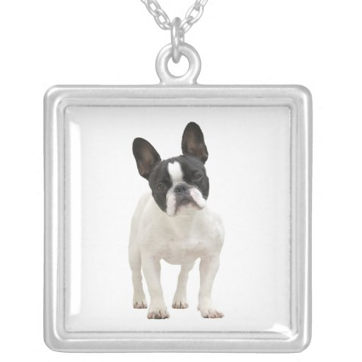 French bulldog cute photo necklace,  gift idea