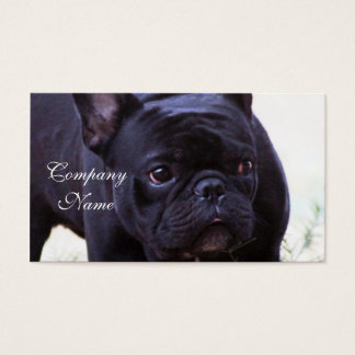 French Bulldog dog Business Card