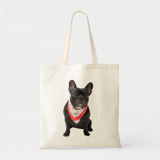 French Bulldog,  dog cute beautiful photo, gift Canvas Bag