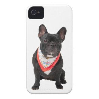 French Bulldog, dog cute beautiful photo, gift Case-Mate iPhone 4 Cases