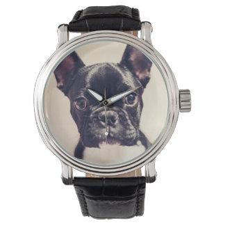 French Bulldog dog Watch