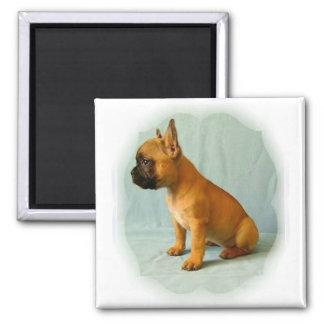 "French Bulldog ""Frenchie Loulou"" Fridge magnet"