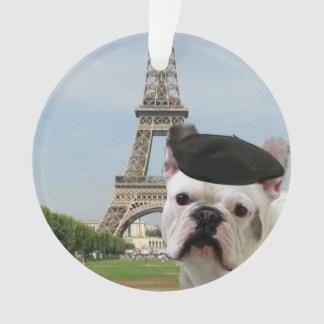 French Bulldog in paris