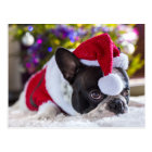 French Bulldog In Santa Hat Under Christmas Tree Postcard