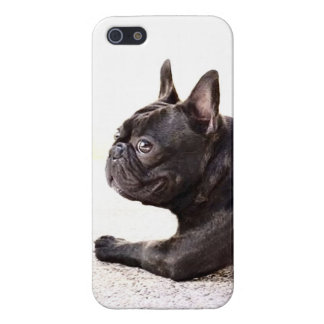 French Bulldog Case For iPhone 5/5S