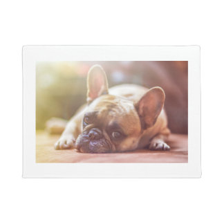 french bulldog laying doormat