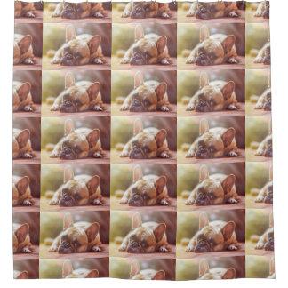 french bulldog laying shower curtain