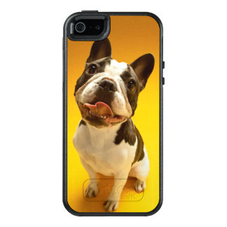 French Bulldog Looking Up OtterBox iPhone 5/5s/SE Case