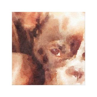 french bulldog napping canvas print