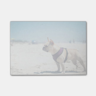 French Bulldog On Beach Post-it® Notes