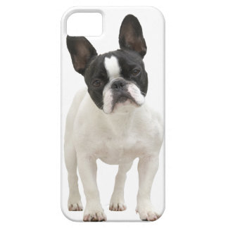 French Bulldog photo iPhone 5 mate case, gift idea iPhone 5 Cases