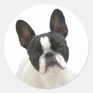 French Bulldog photo round stickers, gift idea Classic Round Sticker