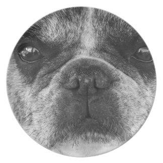 french-bulldog plate