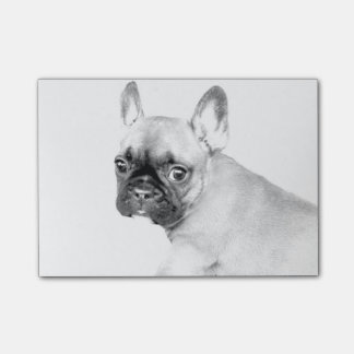 French Bulldog Post-it® Notes