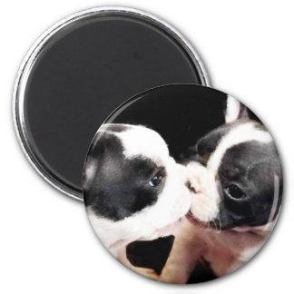 French bulldog puppies 6 cm round magnet