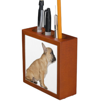 French Bulldog puppy (3,5 months old) Desk Organisers