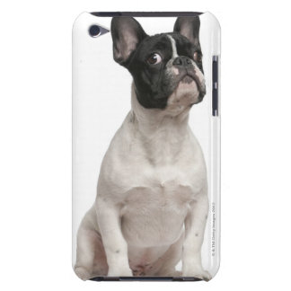French Bulldog puppy (5 months old) iPod Case-Mate Cases