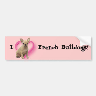 French bulldog puppy bumper sticker