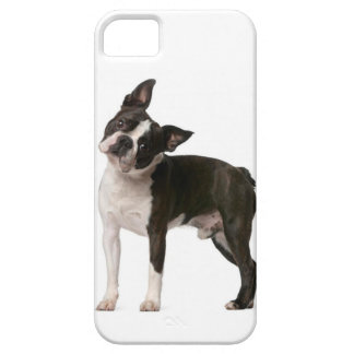 French bulldog - puppy dog - frenchie dog case for the iPhone 5